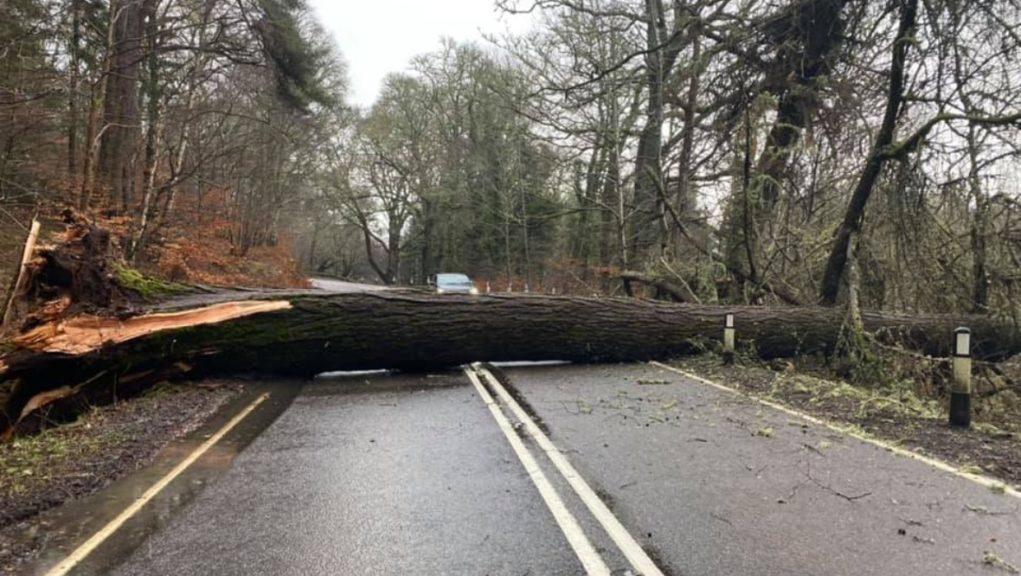 Wind: A tree has fallen on the A82.