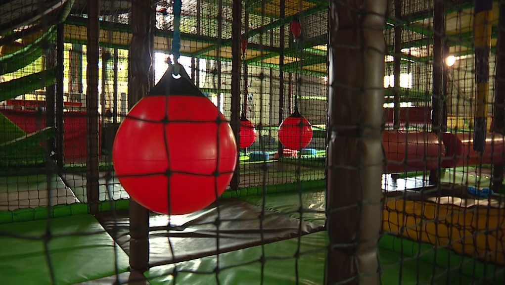 Soft play: Kat Cary apologised for the tweets that she sent.